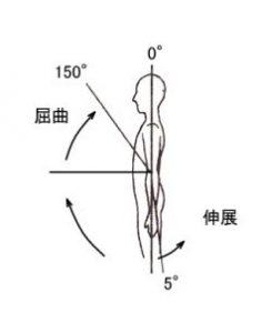 肘関節の関節可動域